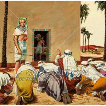 Parsha Sheet: Vayigash – Restoring the Neck of Am Yisroel