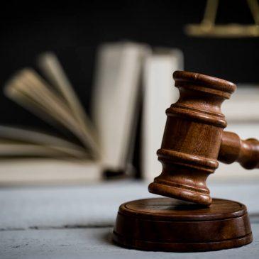 Parsha sheet: Shoftim – Law & Life Surge
