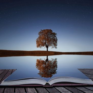 Bereishis – Reflections