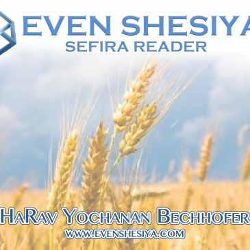The Sefira Reader 5780